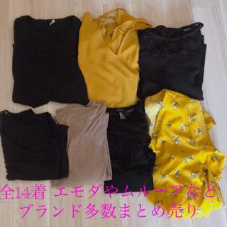 エモダ(EMODA)のレディース服まとめ売り(セット/コーデ)