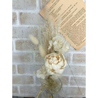 ホワイト ソラフラワーとふわふわパンパスグラスのスワッグ ドライフラワー(ドライフラワー)