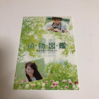 サンダイメジェイソウルブラザーズ(三代目 J Soul Brothers)の植物図鑑 特典ミニクリアファイル(クリアファイル)