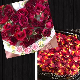 まーちゃん様専用★ミニ薔薇(茎なし)20輪+おまけ4輪付き&花びら3g(小さめ)(ドライフラワー)