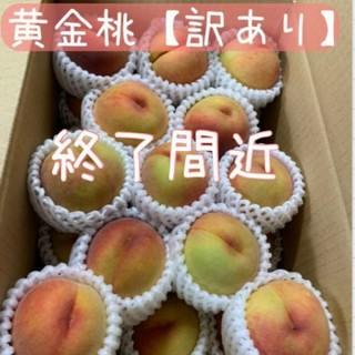桃 黄金桃 ご家庭用 3キロ以上(フルーツ)