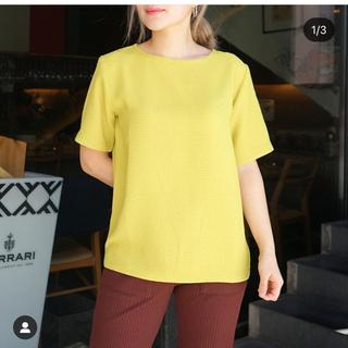 フィーニー(PHEENY)のpheeny   Double weave dobby pullover 未使用(Tシャツ/カットソー(半袖/袖なし))