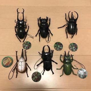 リアル クワガタ & カブトムシ ストラップ(その他)