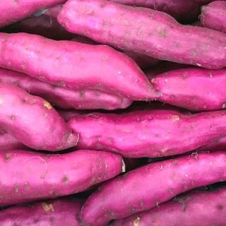 【 土佐紅 さつまいも 新芋 2キロ】★料理に最適★煮物 大学芋 いも天 薩摩芋(野菜)