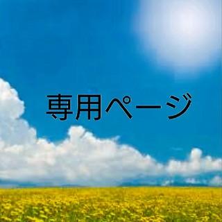ぱんちゃん様専用(その他)