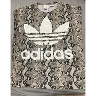 ハイク(HYKE)のHYKE × adidas originals パイソン Tシャツ(Tシャツ(半袖/袖なし))