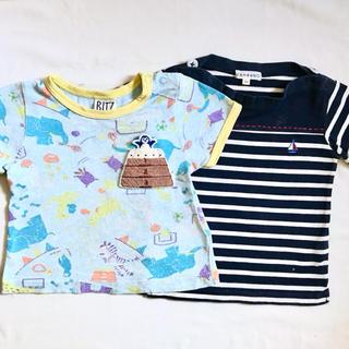 ビッツ(Bit'z)のbit'z サンカンシオン 80 Tシャツ 2枚セット(Tシャツ)