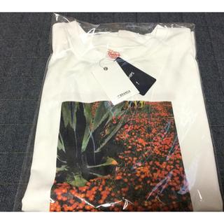 シップスフォーウィメン(SHIPS for women)のSHIPS WOMEN 81BRANCAフォトビッグTEE 新品(Tシャツ(半袖/袖なし))
