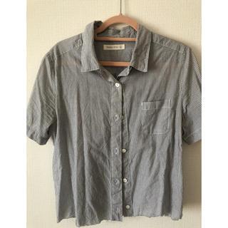 スタディオクリップ(STUDIO CLIP)のTシャツ ストライプ (Tシャツ/カットソー(半袖/袖なし))