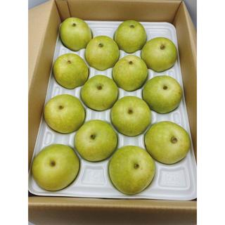 鳥取県産 二十世紀梨🍐5㎏ 14玉(フルーツ)