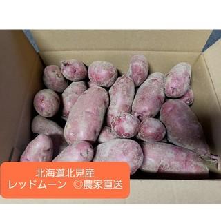北海道 北見産 じゃがいも レッドムーン 4kg(野菜)