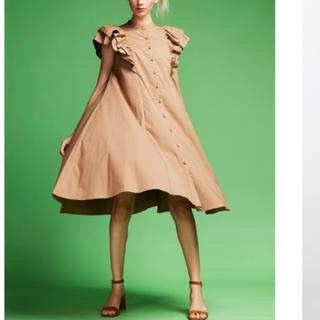ダブルスタンダードクロージング(DOUBLE STANDARD CLOTHING)のDSC / Jコットンワンピース(WEB限定)(ロングワンピース/マキシワンピース)
