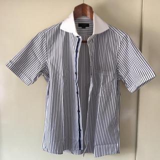 メンズティノラス(MEN'S TENORAS)のタグ付新品未使用  メンズティノラス クレリックホリゾンタルカラーシャツ M(シャツ)