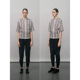 ハイク(HYKE)のHYKE ハイク PYTHON PRINT BIG T-SHIRT/パイソン (Tシャツ(半袖/袖なし))