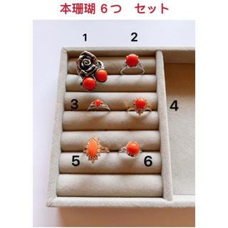 本珊瑚  6つ セット 美品(リング(指輪))