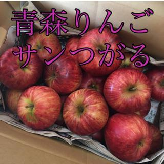 青森りんご サンつがる(フルーツ)