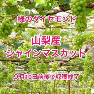 山梨県産●A級良品シャインマスカット(2kg)3〜4房(フルーツ)