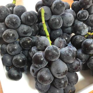 長野パープル家庭用2キロ(フルーツ)