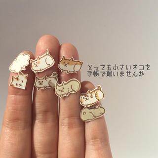 再販③☆指先サイズ!手帳に住みたいネコ(しおり/ステッカー)