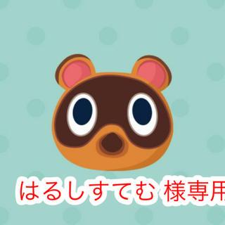 ニンテンドウ(任天堂)のはるしすてむ様 専用ページ(その他)