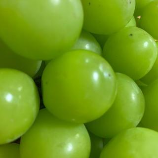 山梨県産シャインマスカット【秀品】セール(フルーツ)