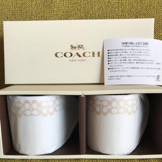 コーチ(COACH)のCOACH ペアマグカップ(スモール(グラス/カップ)
