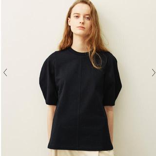 エディットフォールル(EDIT.FOR LULU)のcasa fline Organic Cotton Tシャツ 土日限定値下げ(Tシャツ(半袖/袖なし))
