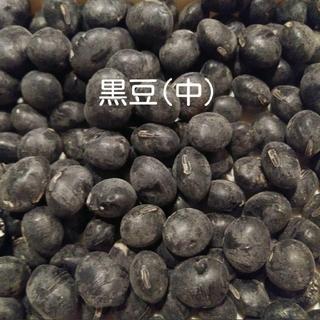 大豆 中 300g(野菜)