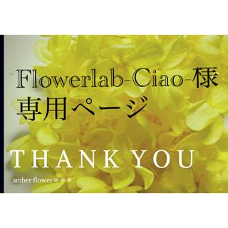 Flowerlab-Ciao-様専用ミニソフトかすみ草シルバー3束・ゴールド2束(ドライフラワー)
