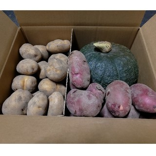 【限定1箱】北海道産 カボチャ じゃがいも レッドムーン セット(野菜)