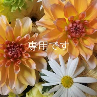デミルクスビームス(Demi-Luxe BEAMS)のゆい☆売り切り様お取置き5/3まで(ひざ丈スカート)