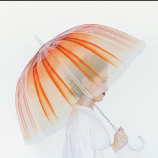 フェリシモ✖️加茂水族館 クラゲ傘(傘)