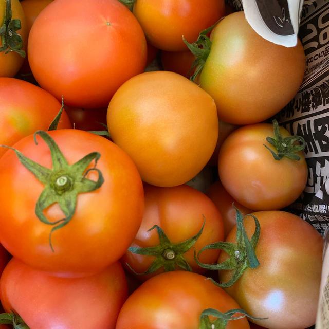麗月小ぶり6キロ 1 食品/飲料/酒の食品(野菜)の商品写真