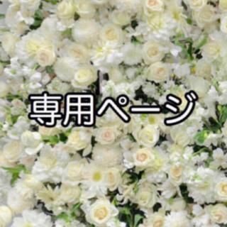 専用ページ(9/14)(その他)