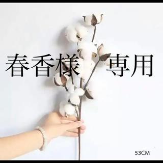 コットンフラワー 造花(ドライフラワー)