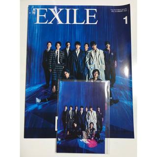 エグザイル トライブ(EXILE TRIBE)の月刊EXILE 2019年1月号(ポストカード付)(音楽/芸能)