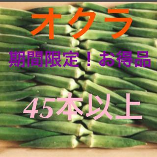 朝採りオクラ(野菜)