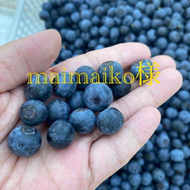 無農薬ブルーベリー 食品/飲料/酒の食品(フルーツ)の商品写真