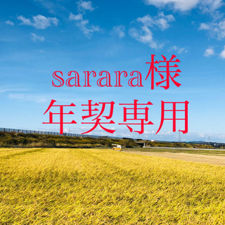 【sarara様 年契専用】令和2年度 こまち精米20Kgひとめ精米30Kg×6(米/穀物)