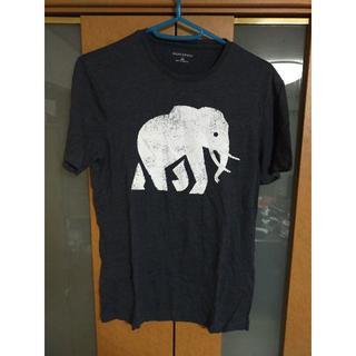 バナナリパブリック(Banana Republic)の【売り尽くし】BANANA REPUBLIC XXS 象プリント Tシャツ 美品(Tシャツ/カットソー(半袖/袖なし))