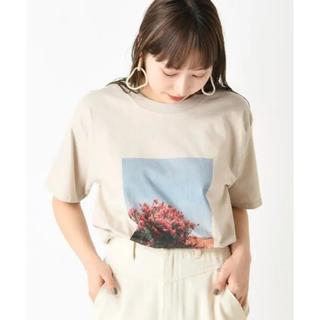 ミスティック(mystic)の転写フォトプリント半袖T ベージュ(Tシャツ(半袖/袖なし))