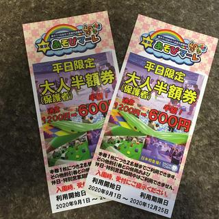 東京あそびマーレ割引券(遊園地/テーマパーク)