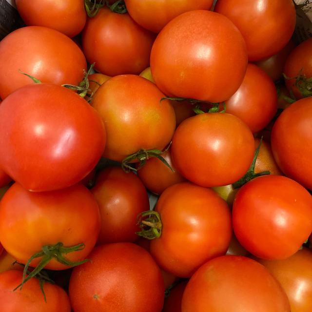 麗月小ぶり6キロ 3九州、沖縄発送不可 食品/飲料/酒の食品(野菜)の商品写真