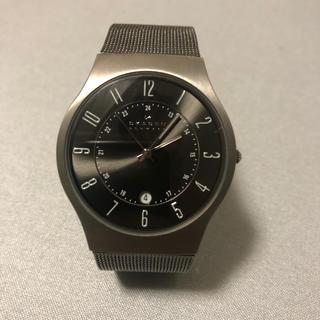 スカーゲン(SKAGEN)のSKAGEN 時計 スカーゲン(腕時計)