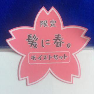 ボタニスト(BOTANIST)の【モイスト】春 桜 限定 ボタニスト  ボタニカル  シャンプー&トリートメント(シャンプー)