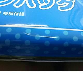 ショウガクカン(小学館)のビーパル 7月号 特別付録(その他)
