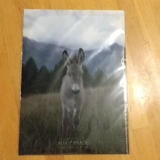 オゥパラディ(AUX PARADIS)のAUX PARADIS  ファイル&メモ帳(ファイル/バインダー)