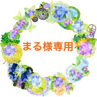 まる様 専用ページ13(その他)
