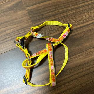 クマノプーサン(くまのプーさん)のディズニー 胴輪 プーさん SS 黄色 美品(犬)