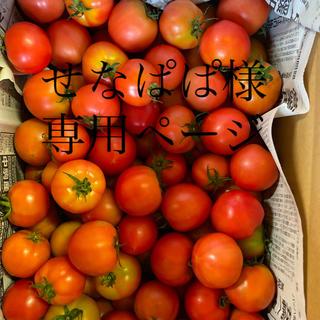 せなぱぱ様専用ページ(野菜)